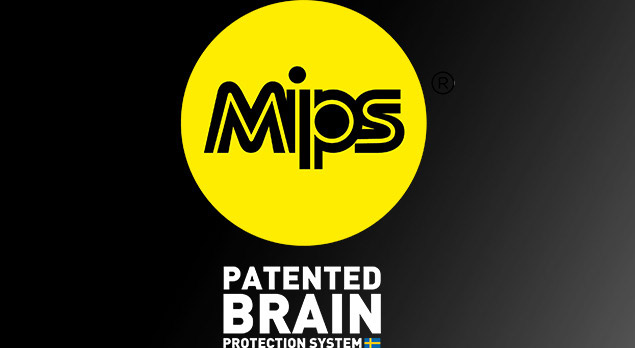 Mips Technology Explained