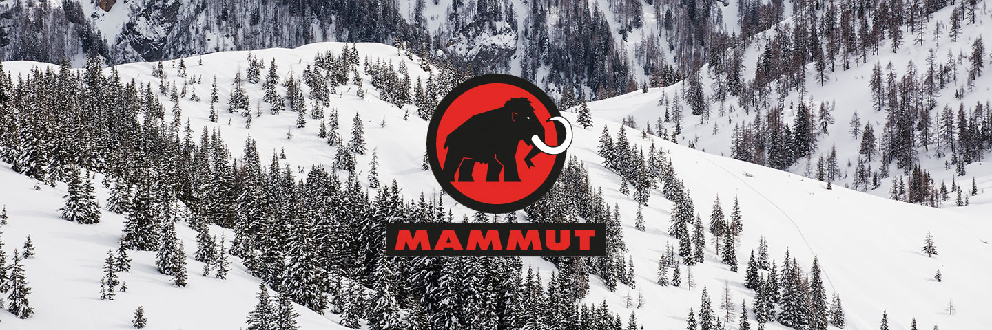 Mammut logo with snowy forest background